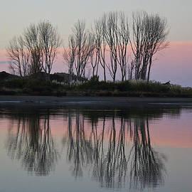 Venetia Featherstone-Witty - Whakatane River at sunset
