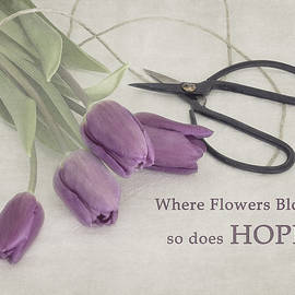 Where Flowers Bloom by Kim Hojnacki