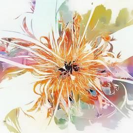 Whimsical Pastels by Amanda Moore