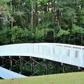 Cynthia Guinn - White Bridge