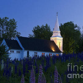 White Church at Dusk in a Field of Lupines by John Vose