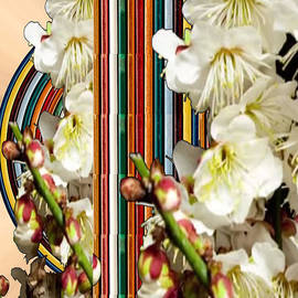 Navin Joshi - White Flower Medley Colorful Rainbow stripes on the backdrop Artist NavinJoshi