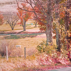 Brooke T Ryan - White Horse with Orange and Green Autumn Colors
