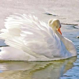Elaine Manley - White Swan