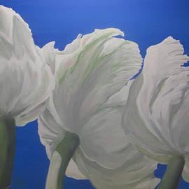 Sandy Sparks - White Tulips