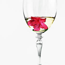 White Wine by Marcia Colelli