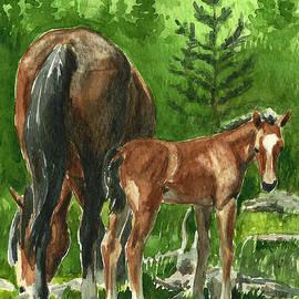 Linda L Martin - Wild Alberta mare and Foal