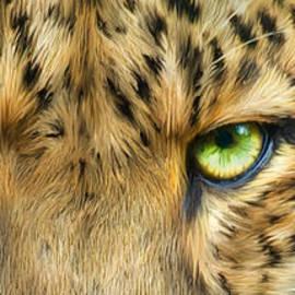 Wild Eyes - Leopard by Carol Cavalaris