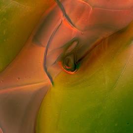 Wild Eyes by Omaste Witkowski