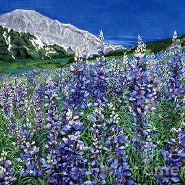 Wild Lupine by Barbara Jewell