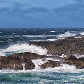 Allan Van Gasbeck - Wild Pacific Surf