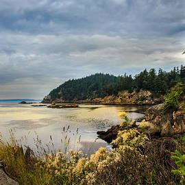 Wildcat Cove by Robert Bales