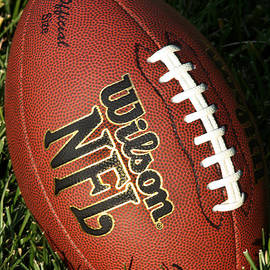 Wilson NFL Football - 5100 by Gary Gingrich Galleries