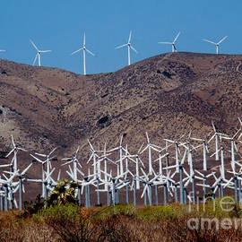 Eva Kato - Wind Farm
