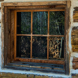 Window Reflection by Paul Freidlund