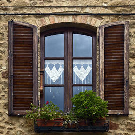 Sally Weigand - Window Shutters and Lace