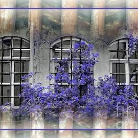 Freddy Kirsheh - Lilac spirit