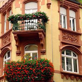 Jean Hall - Windows on Heidelberg