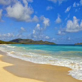 Windward Oahu by Dominic Piperata