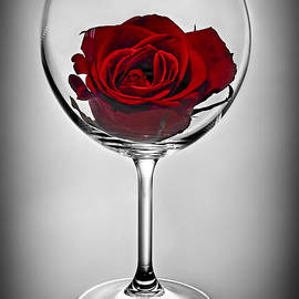 Wine glass with rose by Elena Elisseeva