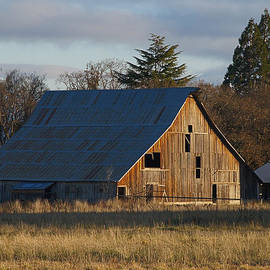 Mick Anderson - Winter Afternoon Light on Barn