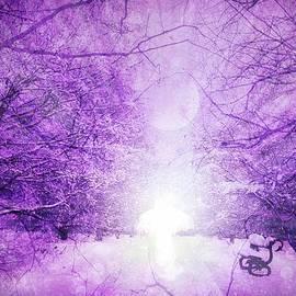 Winter Angel by Lilia D