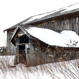 Geoffrey Coelho - Winter at Spec Pond Farm No.2