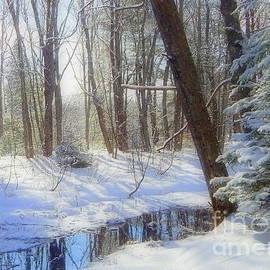 Karen Cook - Winter at the Duck Pond