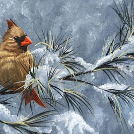 Christopher Lyter - Winter Cardinal