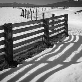 Inge Johnsson - Winter Fence