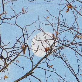 Sonali Gangane - Winter Moon