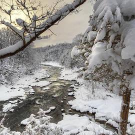 Bill Wakeley - Winter Morning