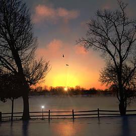 Michael Rucker - Winter Morning