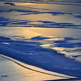 Lisa Holland-Gillem - Winter Reflections 2