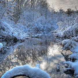 Winter Reflections by William Reek
