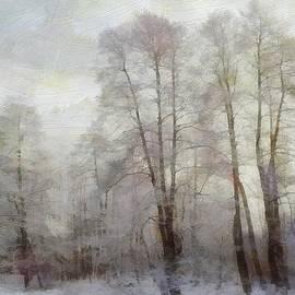 Gun Legler - Winter softness