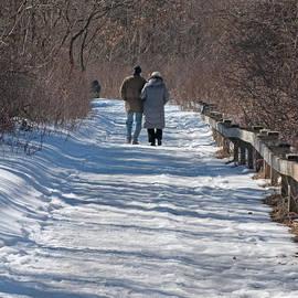 Ann Horn - Winter Stroll