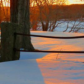 Dianne Cowen - Winter Sunrise Glow