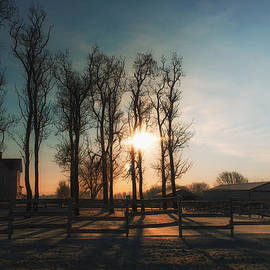Thomas Woolworth - Winter Sunrise On The Farm 01