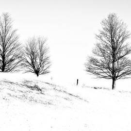 Steve Harrington - Winter Trinity infrared