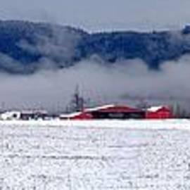 Ian Mcadie - Winter Valley
