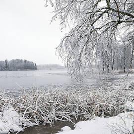 Evija Freidenfelde - Winter view