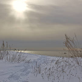 Winter walk on the beach by Diana Nault