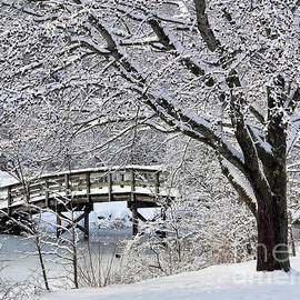 Janice Drew - Winter Wonderland
