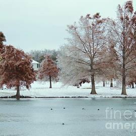 Robert ONeil - Winter Wonderland