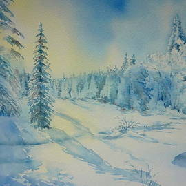 Thomas Habermann - Winter wonderland