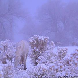 Jeanne  Bencich-Nations - Winter