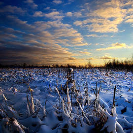 Winter's Kiss by Phil Koch