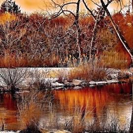 Winters Light by Rick Todaro