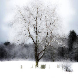 Winter's Witness by Deena Athans